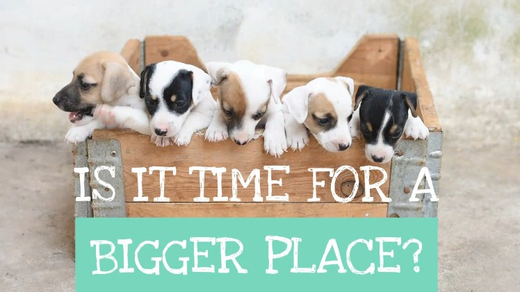Bigger Place