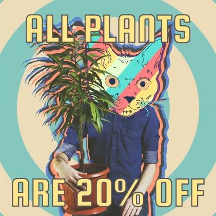 Plants Sale